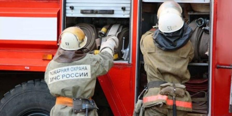 Пожар в Ясненский городской округ