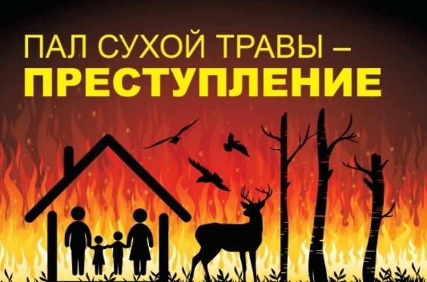 Жителя Матвеевского района привлекли к административной ответственности за поджог травы